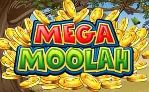 Play Mega Moolah 5 Reel Slot